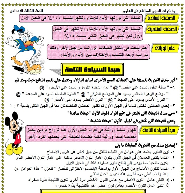 exam-eg.com_13359897395.jpg