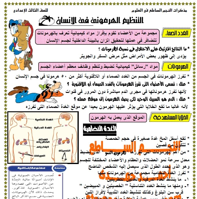 exam-eg.com_13359897397.jpg