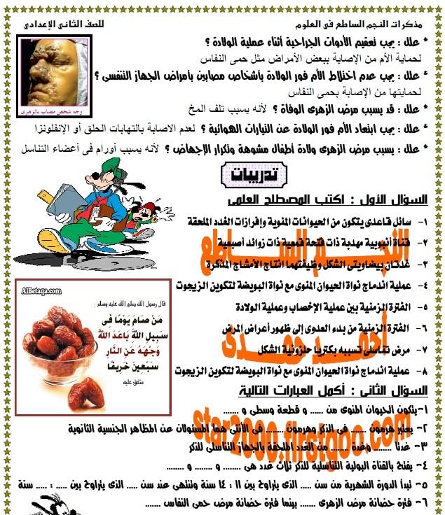 exam-eg.com_1365462428196.jpg