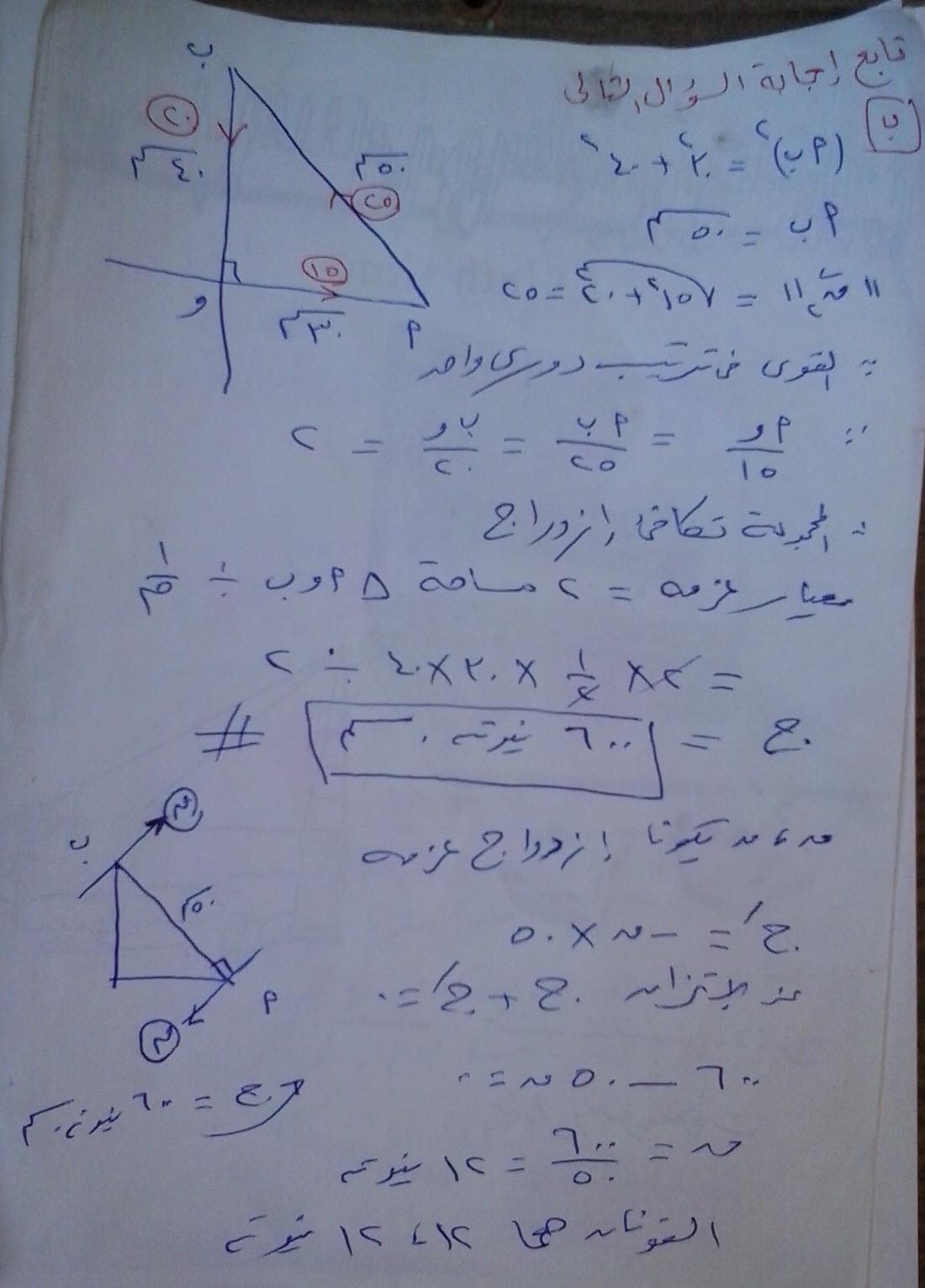 exam-eg.com_1371918811942.jpg