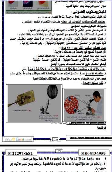 exam-eg.com_1384481253872.jpg