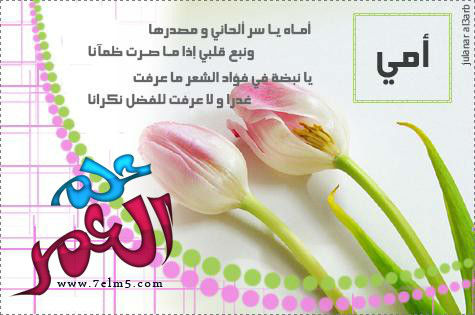 exam-eg.com_1394893155294.jpg