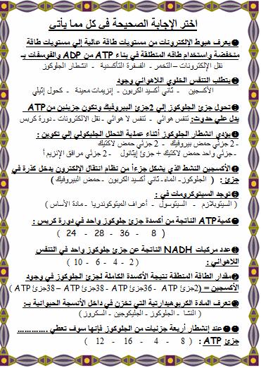 exam-eg.com_1399759027121.png