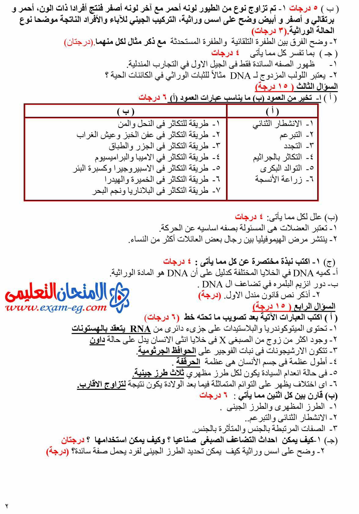 exam-eg.com_1403333594012.jpg