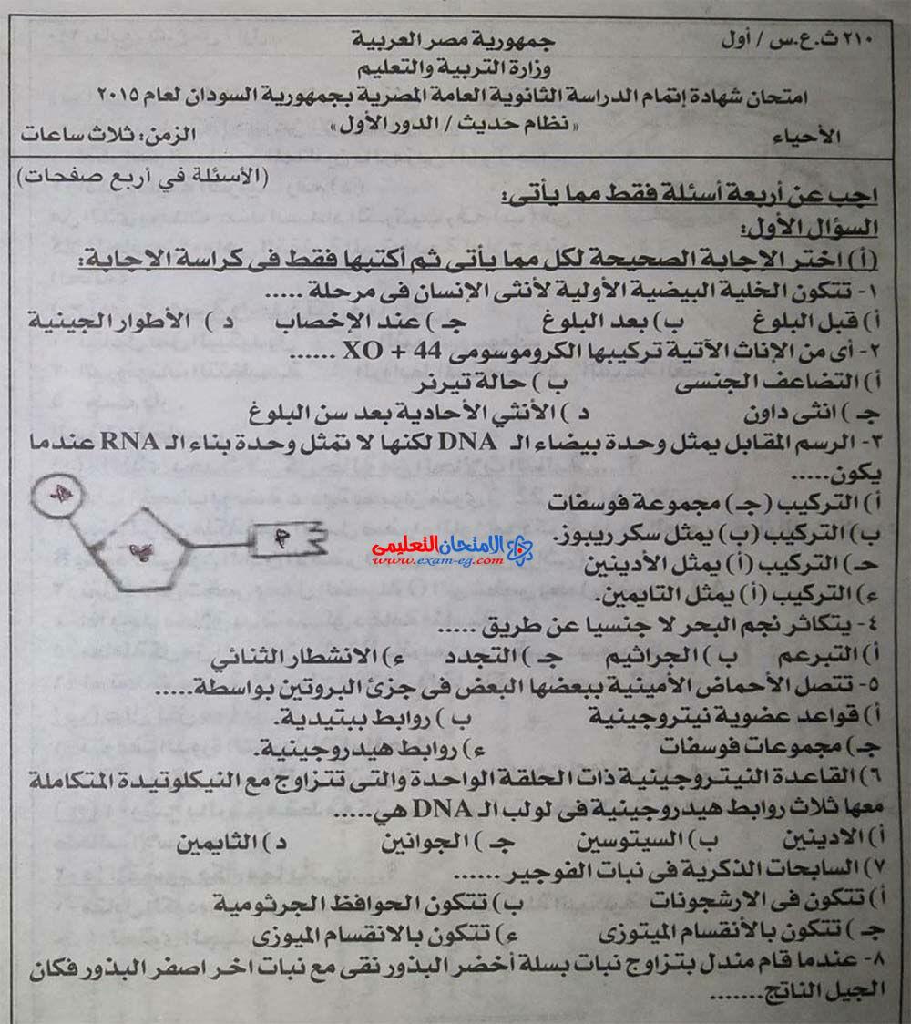 exam-eg.com_1429664424121.jpg