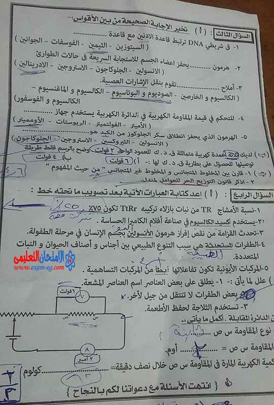 exam-eg.com_143212550432.jpg
