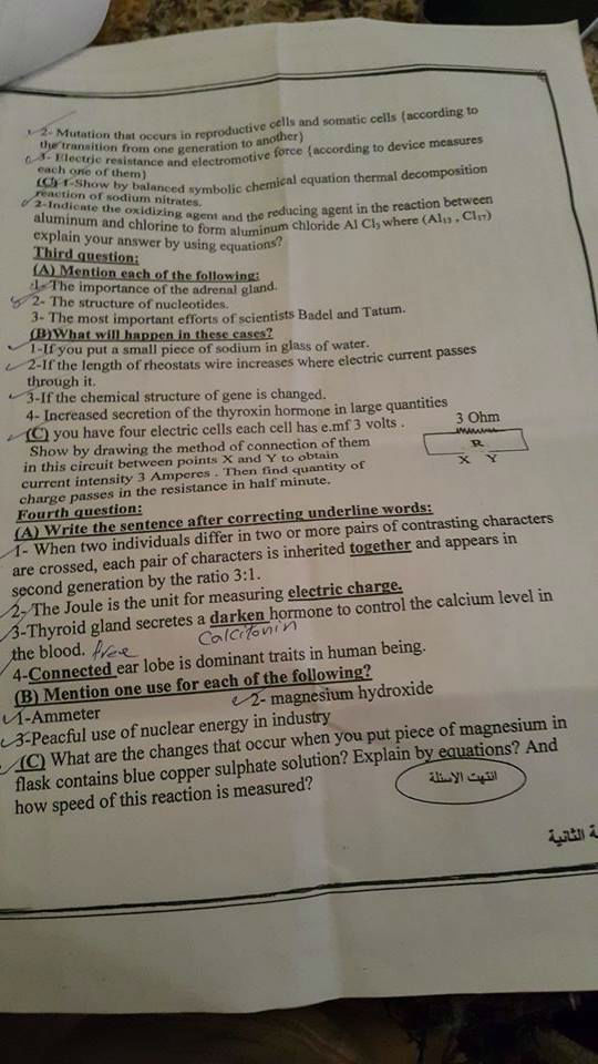 exam-eg.com_1432218062762.jpg