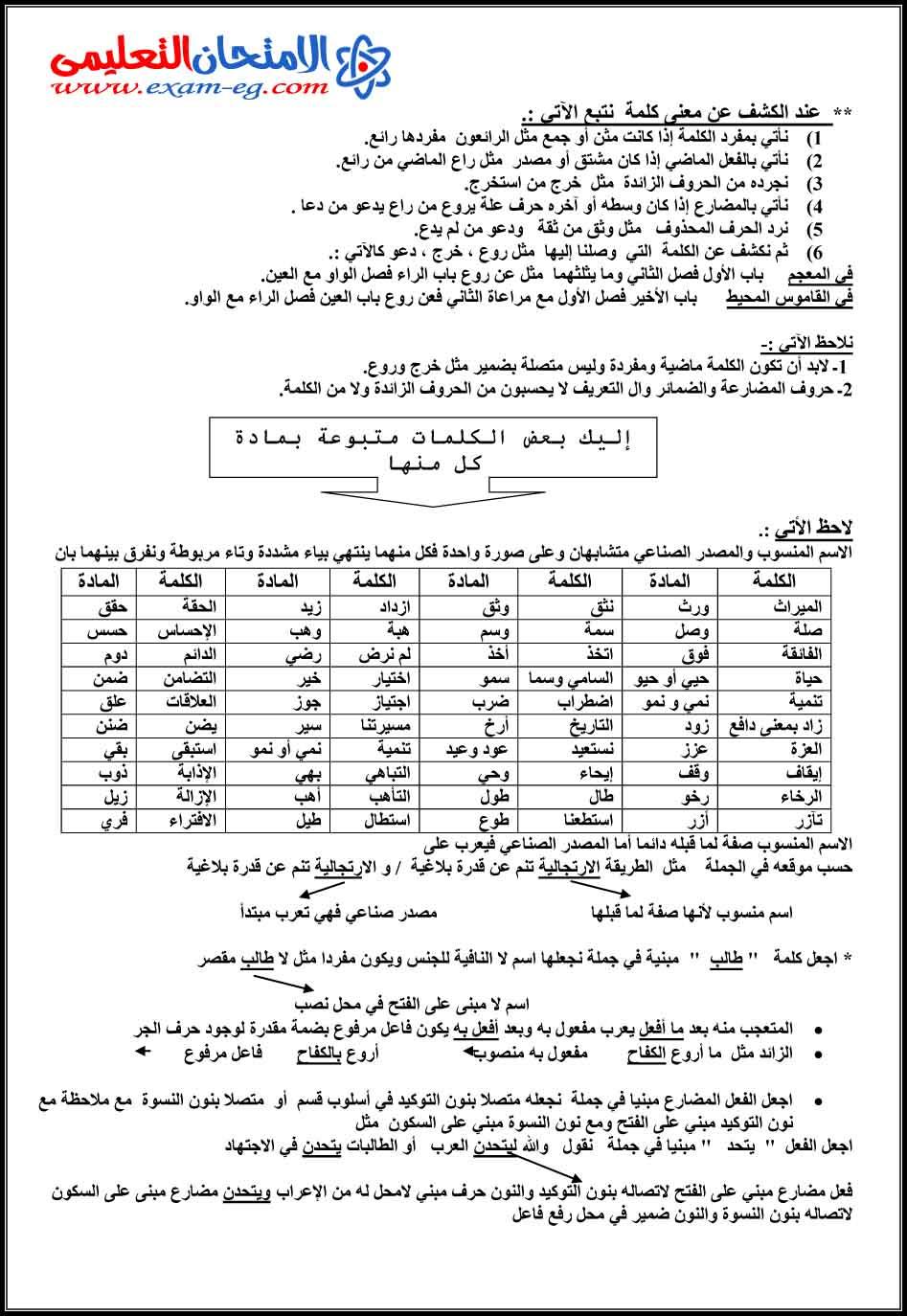 exam-eg.com_1453827904533.jpg