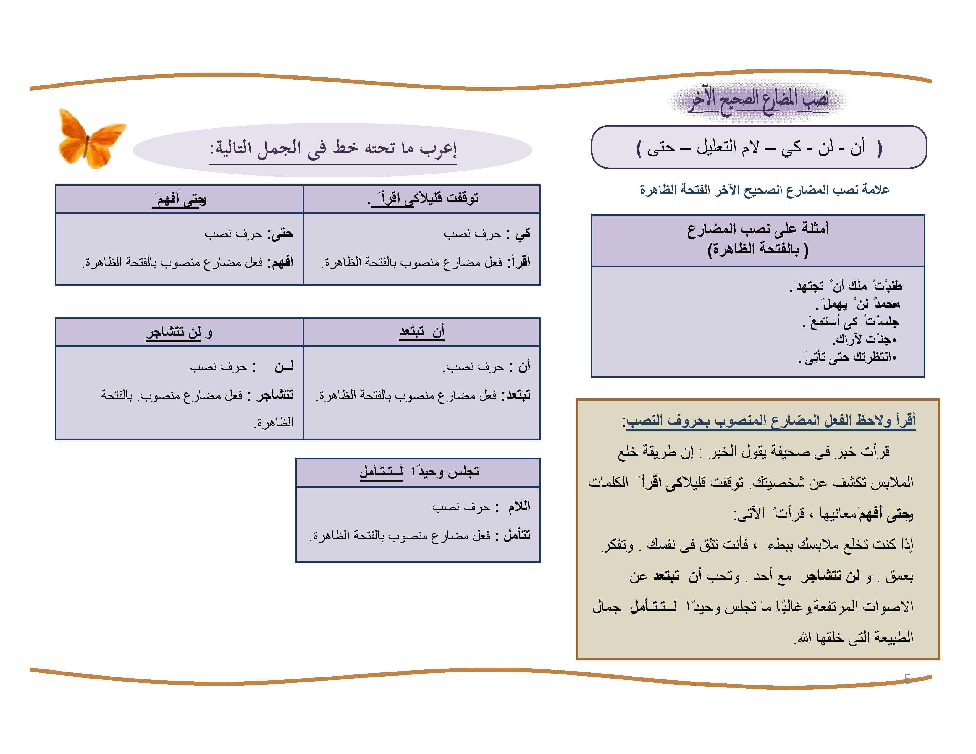 exam-eg.com_146067945171.jpg
