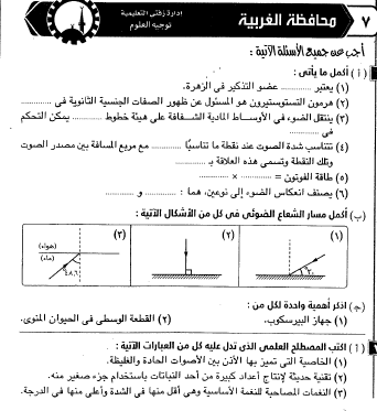 exam-eg.com_149305573451.png