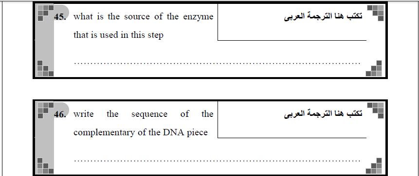 exam-eg.com_149744720661.png