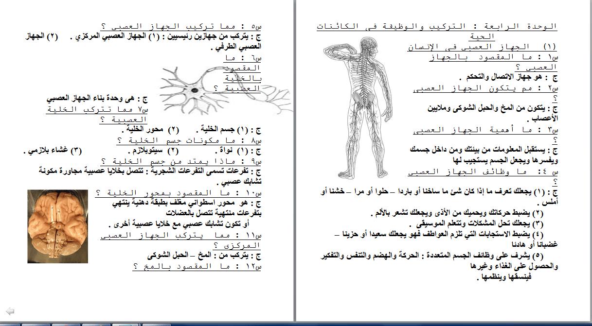 exam-eg.com_1512743449721.png