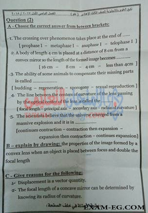 exam-eg.com_151614588252424.jpg