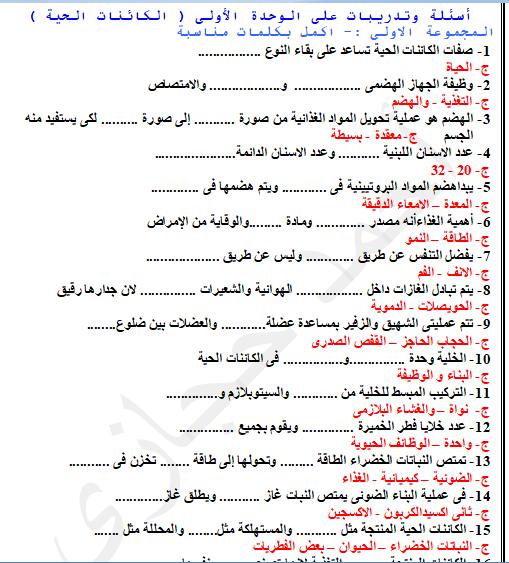 exam-eg.com_151956137667291.png