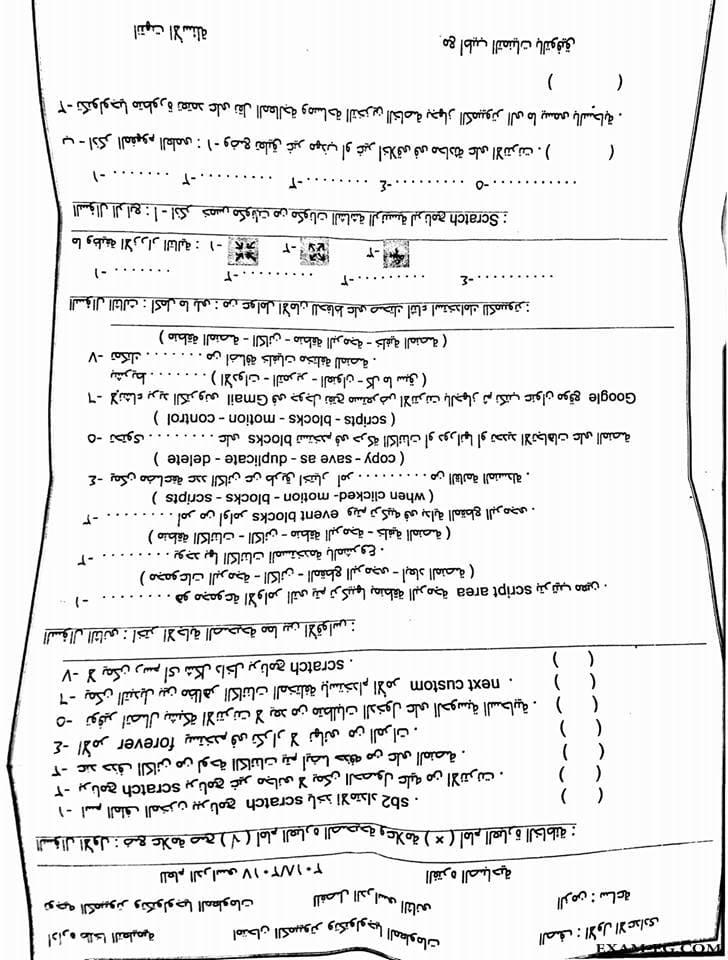 exam-eg.com_152657328614421.jpg