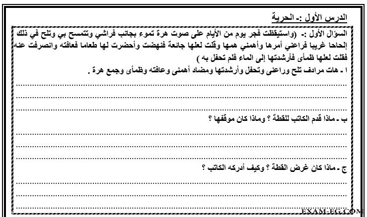 exam-eg.com_154480778281.png