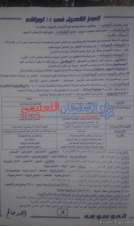 exam-eg.com_1546260368543.jpg