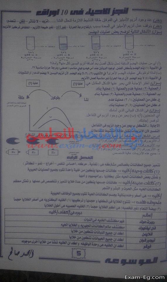 exam-eg.com_154626036865.jpg
