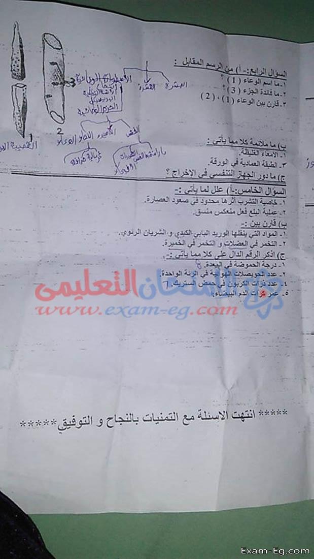 exam-eg.com_1546591884486.jpg