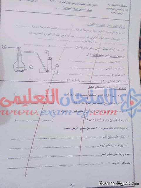 exam-eg.com_155041235984.jpg