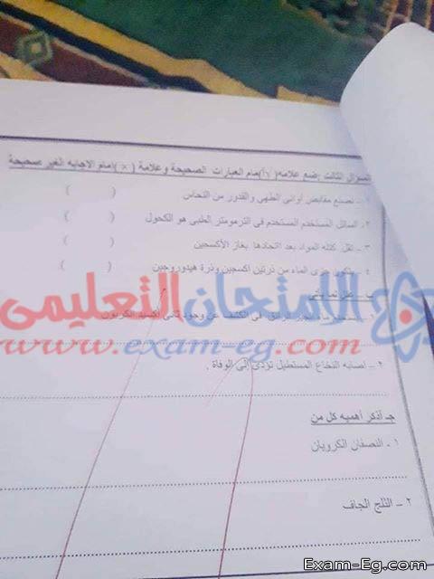 exam-eg.com_1550412359845.jpg