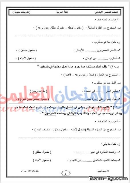 exam-eg.com_155663237459582.jpg