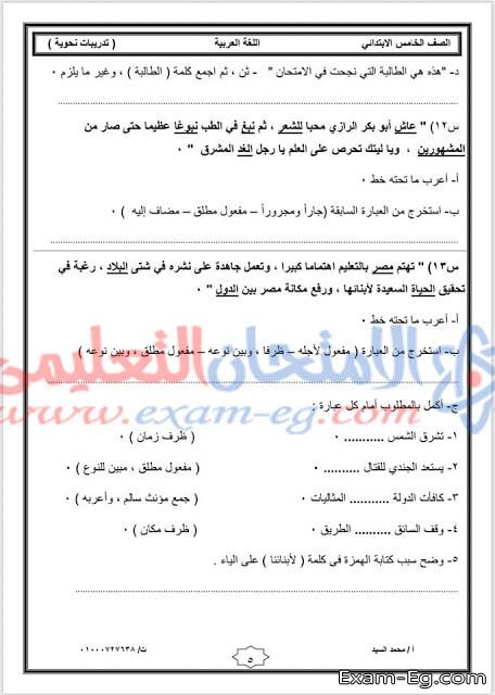 exam-eg.com_155663237461283.jpg