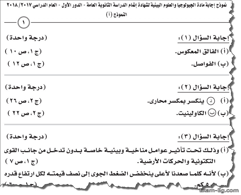 exam-eg.com_155698925556237.jpg