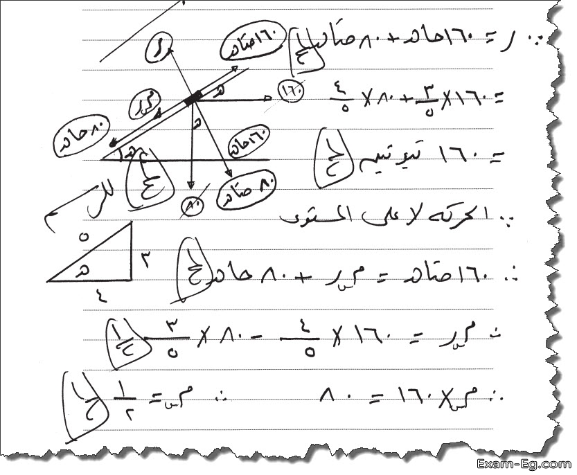 exam-eg.com_1556989255764515.jpg