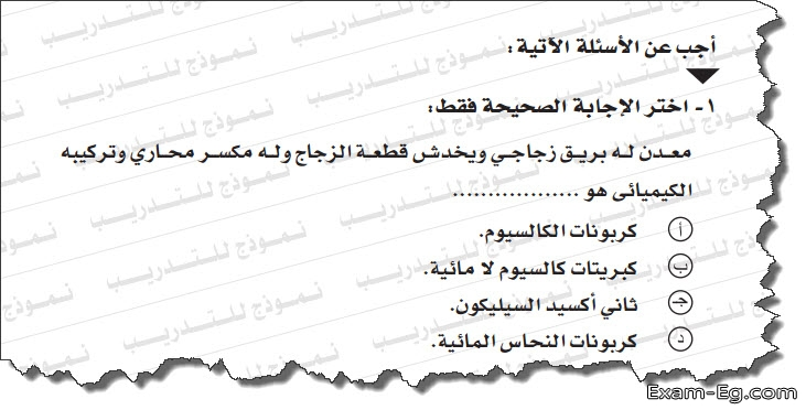 exam-eg.com_1557015487523310.jpg