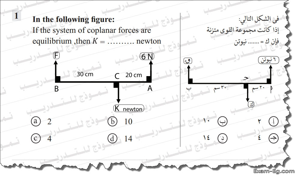 exam-eg.com_155702249292553.jpg