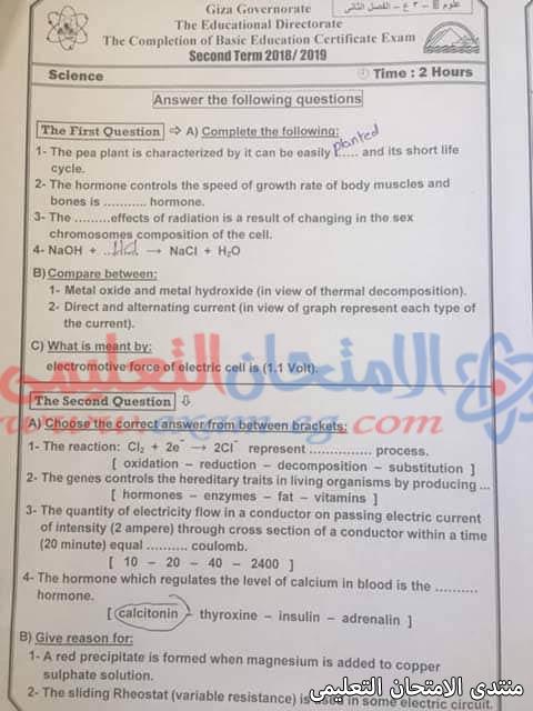 exam-eg.com_155781152021869.jpg
