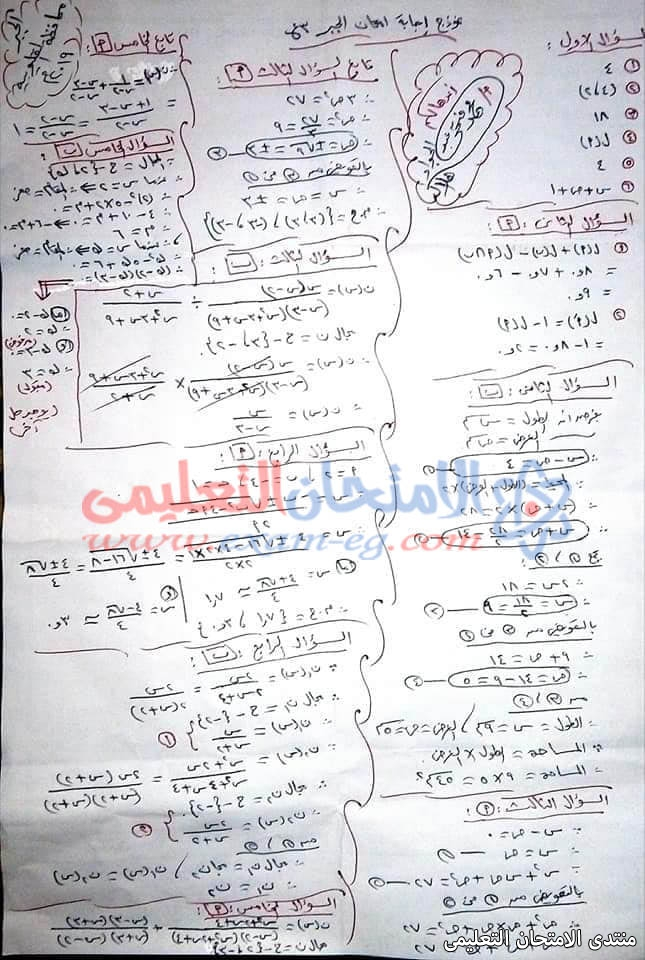 exam-eg.com_1557976112519413.jpg