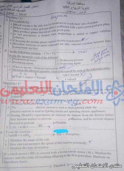 exam-eg.com_155797709065587.jpg