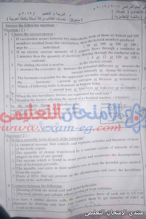 exam-eg.com_155797709067368.jpg
