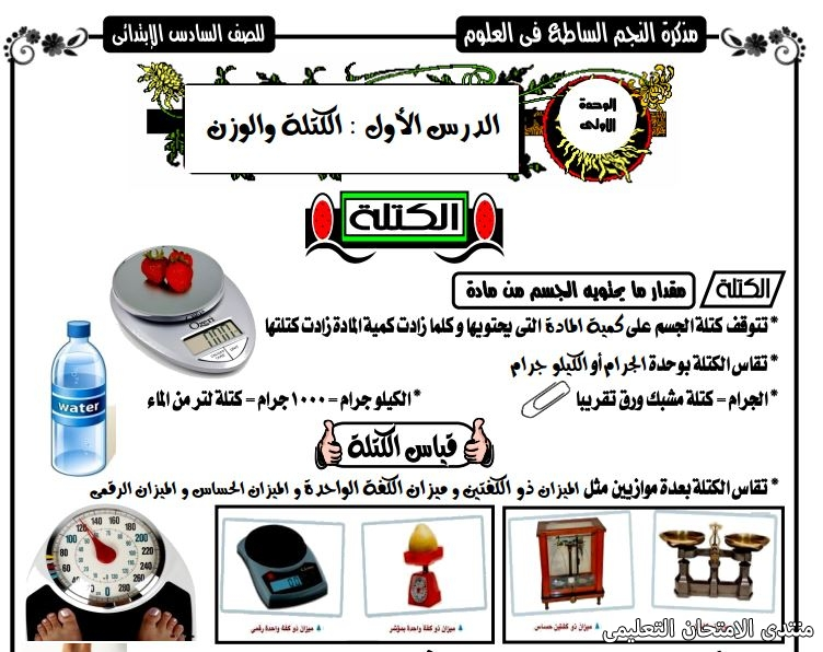exam-eg.com_157123027115493.jpg