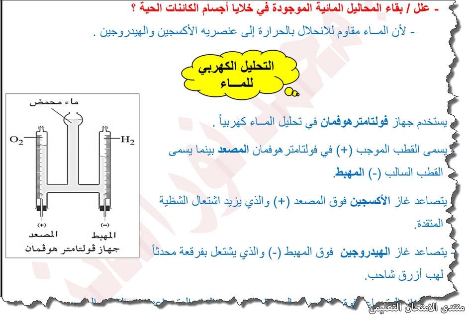 exam-eg.com_157161557338591.jpg