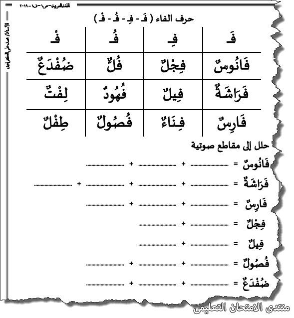 exam-eg.com_157218666334341.jpg