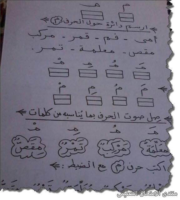 exam-eg.com_157218809987571.jpg