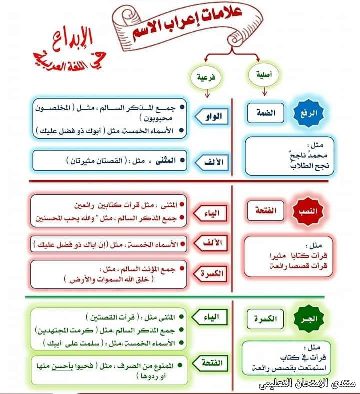 exam-eg.com_157231591320761.jpg