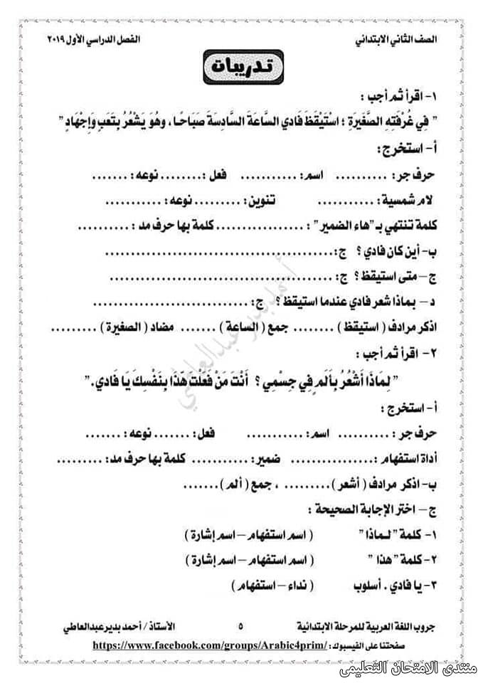 exam-eg.com_157239639105162.jpg