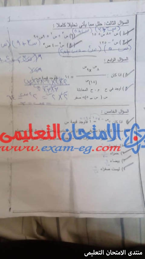 exam-eg.com_157354152815268.jpg