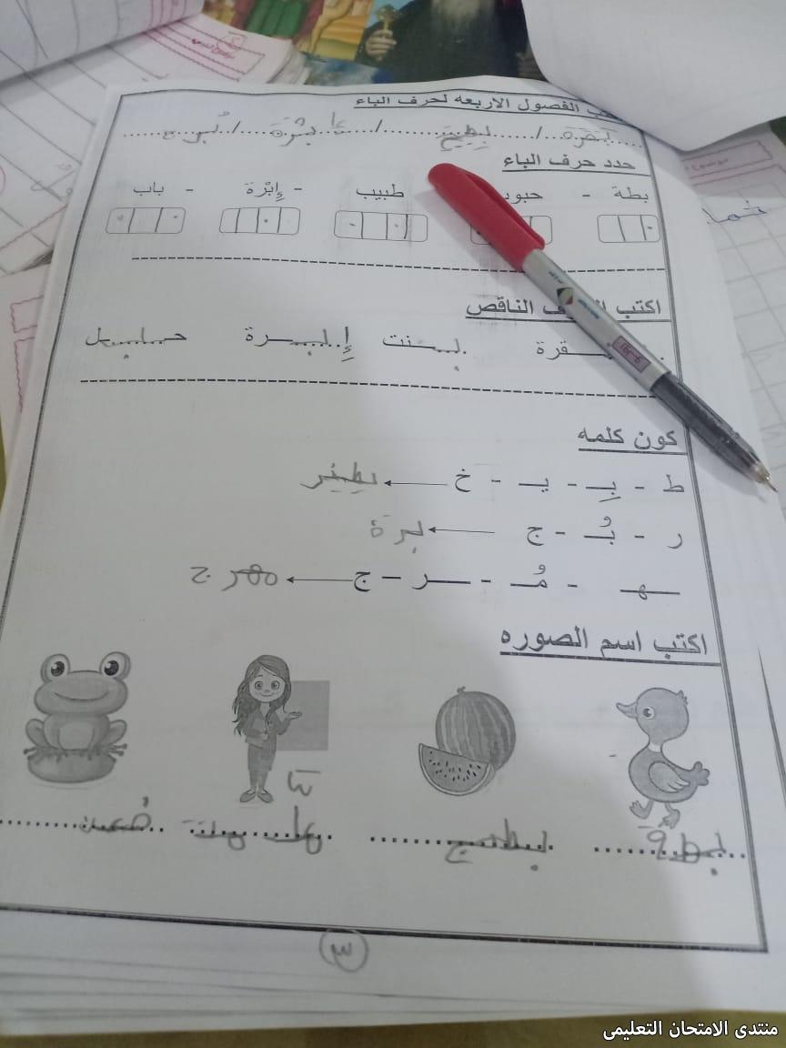 exam-eg.com_157392953686583.jpg