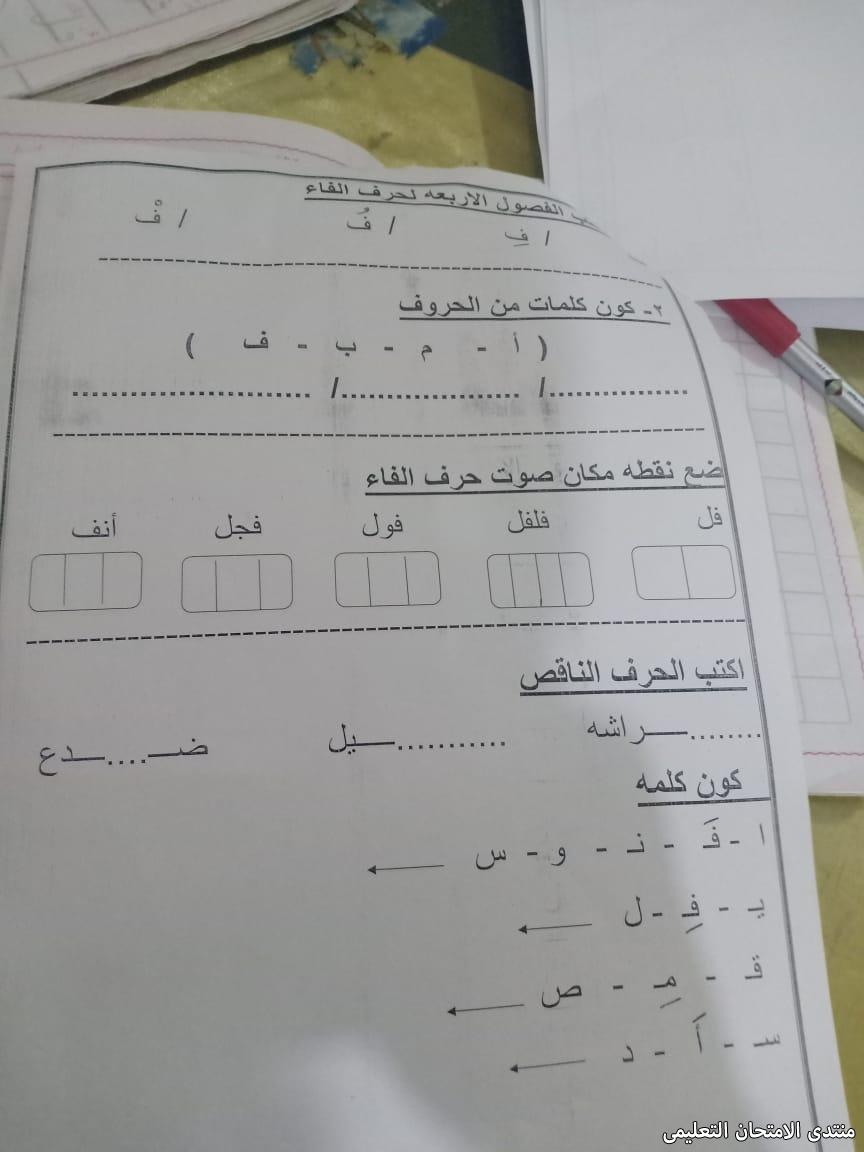 exam-eg.com_157392953691244.jpg