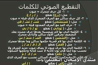 exam-eg.com_157423641983871.jpg