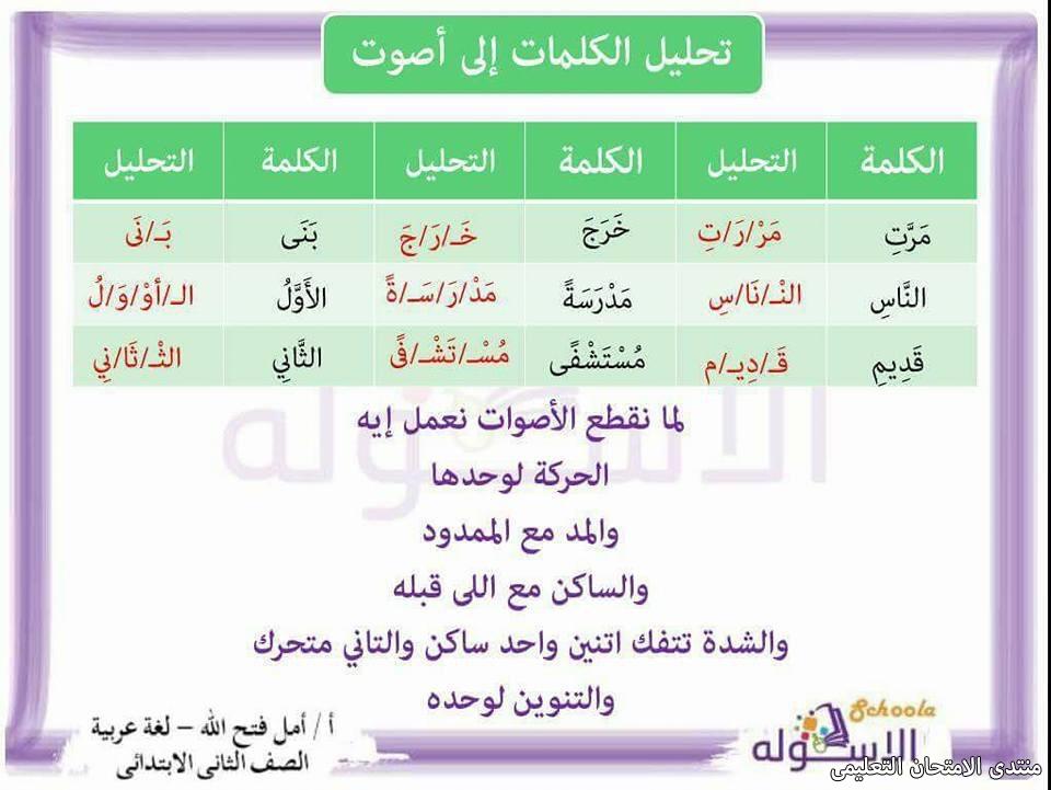 exam-eg.com_157423641985742.jpg