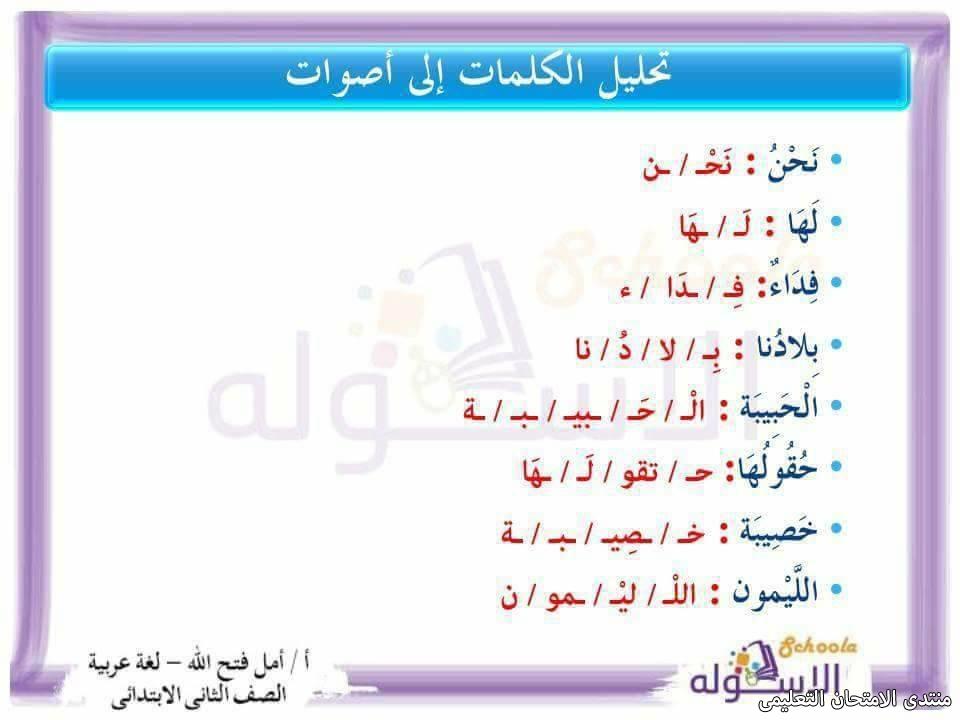 exam-eg.com_157423641989643.jpg