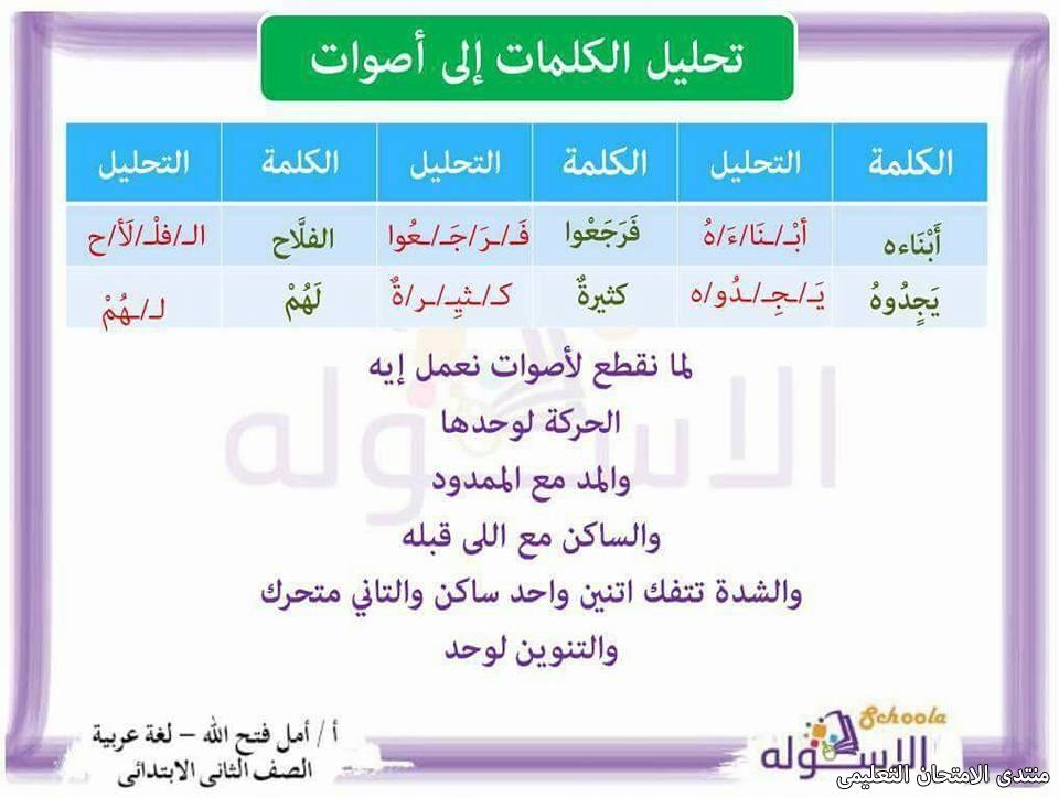 exam-eg.com_157423641992694.jpg