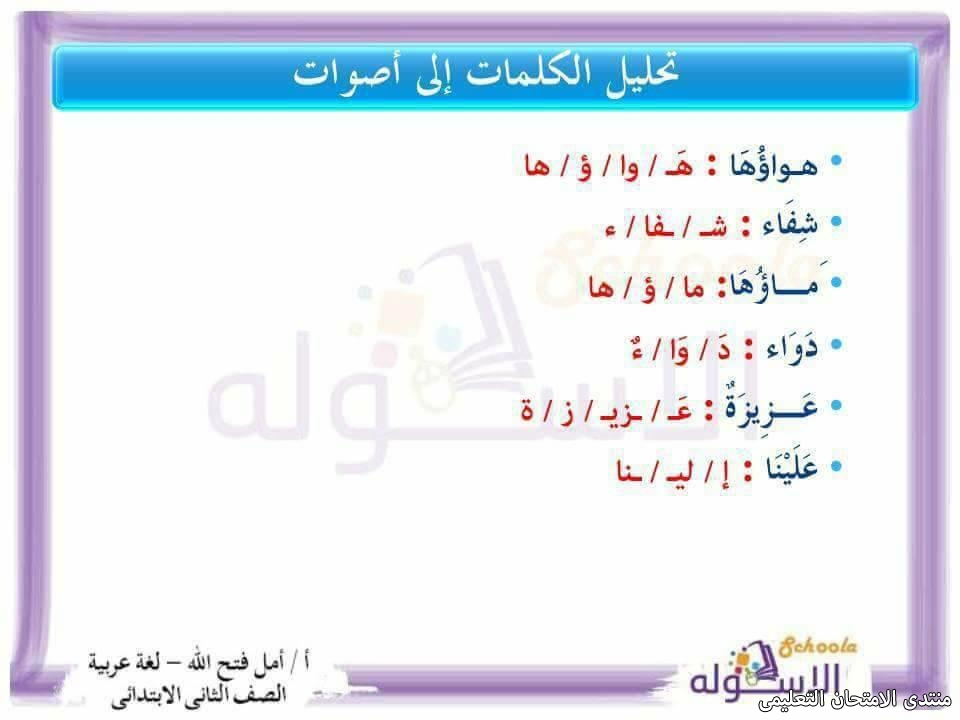 exam-eg.com_157423641995715.jpg