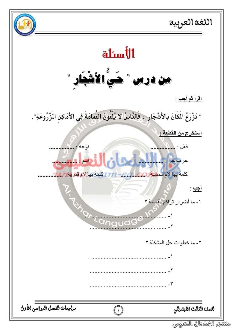 exam-eg.com_157428615408024.jpg